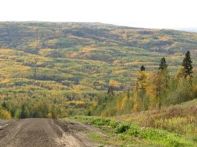 Buffalo Head Prairie Hills
